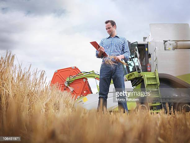 Farmer checking crop