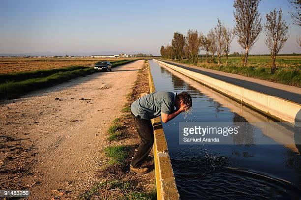 A farmer cleans his face after a days work during the rice harvest in the Ebro Delta on October 6 2009 in Aposta near Valencia Spain The Ebro Delta...