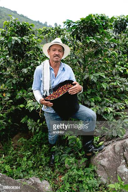 Farmer collecting coffee at a farm