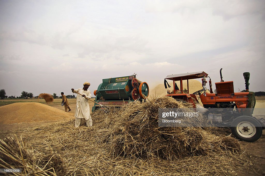 A farmer collects and threshes wheat, as another farmer throws grain from a bowl on to a mound of wheat, during a harvest in the Fatehganj district of Punjab province, Pakistan, on Sunday, May 5, 2013. Pakistan wheat output to increase this year, the U.S Department of Agriculture's Foreign Agricultural Service said in a report posted today on its website on April 4. Photographer: Asad Zaidi/Bloomberg via Getty Images