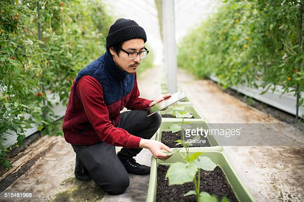 Farmer conducting research using a digital tablet in a greenhouse