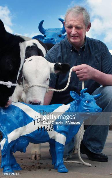 Farmer David Robertson protests over falling milk prices outside the Scottish parliament in Edinburgh Prices have fallen by 20% since the start of...