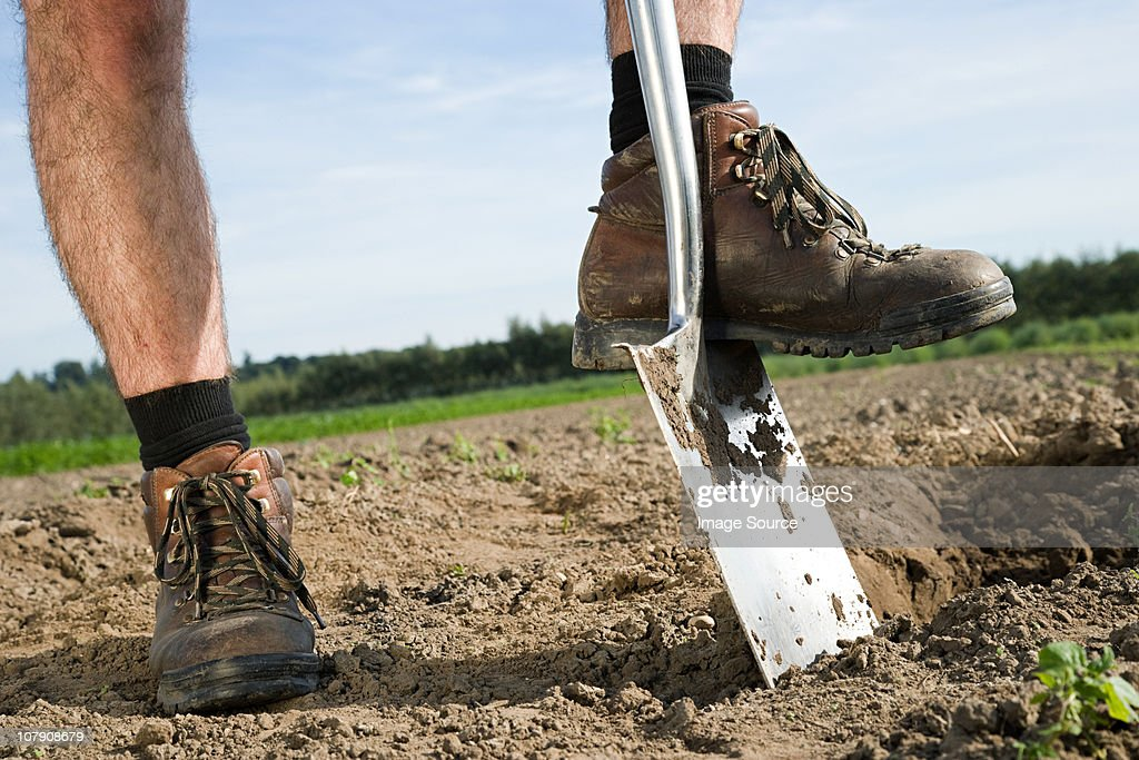 Farmer digging in field