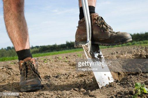Farmer digging in field