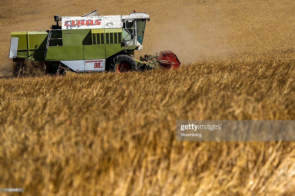 A farmer drives a Claas Dominator 98 combine harvester during a barley harvest in Cervera, Spain, on Thursday, July 4, 2013. Spain consumes about 28 million to 30 million tons of grain a year, of which two-thirds is produced domestically, according to young farmers organization Asaja. Photographer: David Ramos/Bloomberg via Getty Images