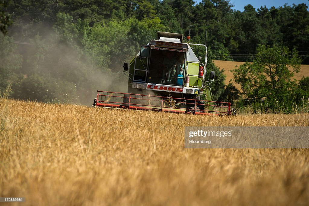 A farmer drives a Claas Dominator 98 combine harvester past during a barley harvest in Cervera, Spain, on Thursday, July 4, 2013. Spain consumes about 28 million to 30 million tons of grain a year, of which two-thirds is produced domestically, according to young farmers organization Asaja. Photographer: David Ramos/Bloomberg via Getty Images