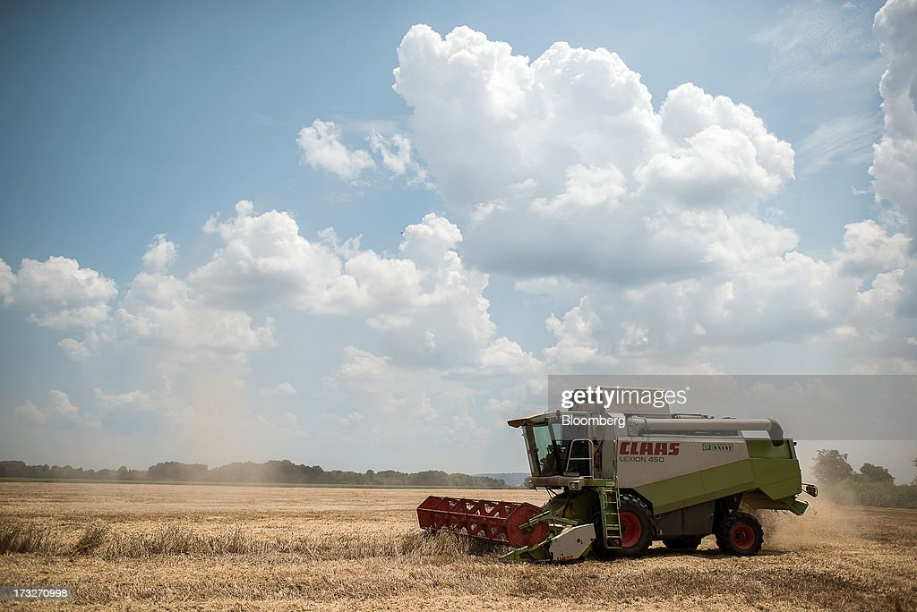 A farmer drives a Claas Lexion 450 combine harvester across a wheat field operated by Bonafarm Group during the summer harvest in Kislippo, Hungary, on Wednesday, July 10, 2013. The world's grain harvest will be bigger in the 2013-14 season than predicted a month ago on increased estimates for corn in China and larger wheat crops in India and Canada, the International Grains Council said. Photographer: Akos Stiller/Bloomberg via Getty Images