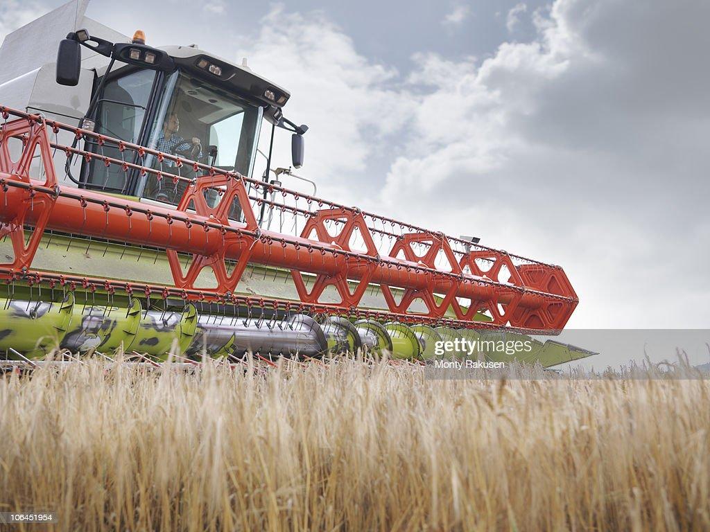 Farmer driving combine harvester