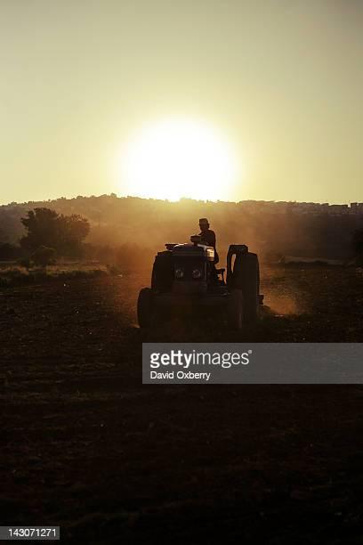 Farmer driving tractor in crop fields