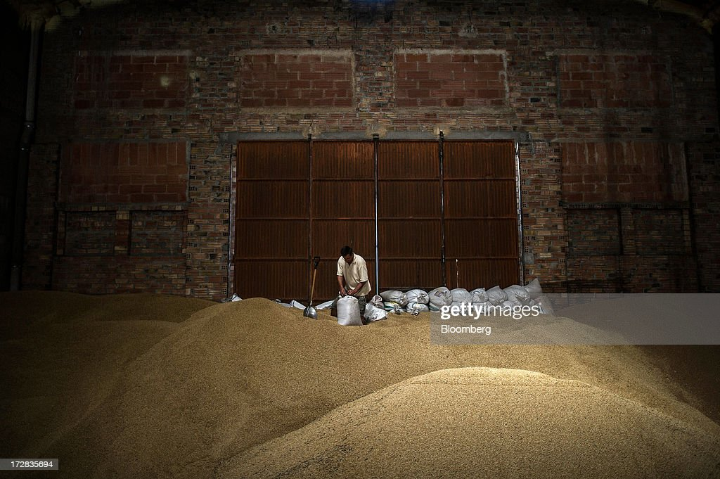 A farmer fills sacks with newly-harvested barley grain in a warehouse in Cervera, Spain, on Thursday, July 4, 2013. Spain consumes about 28 million to 30 million tons of grain a year, of which two-thirds is produced domestically, according to young farmers organization Asaja. Photographer: David Ramos/Bloomberg via Getty Images