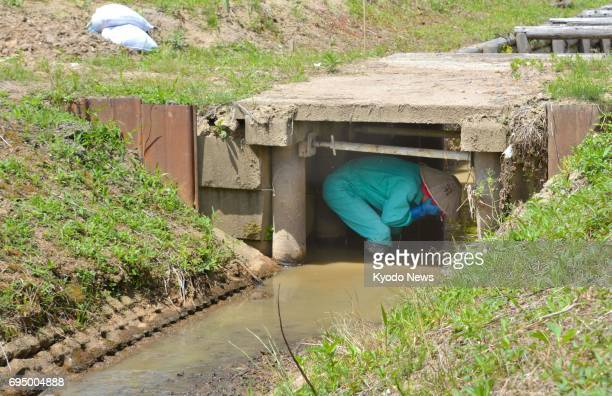 A farmer finds shelter in an irrigation waterway during an evacuation drill in Tsubame Niigata Prefecture on June 12 in the wake of North Korea's...