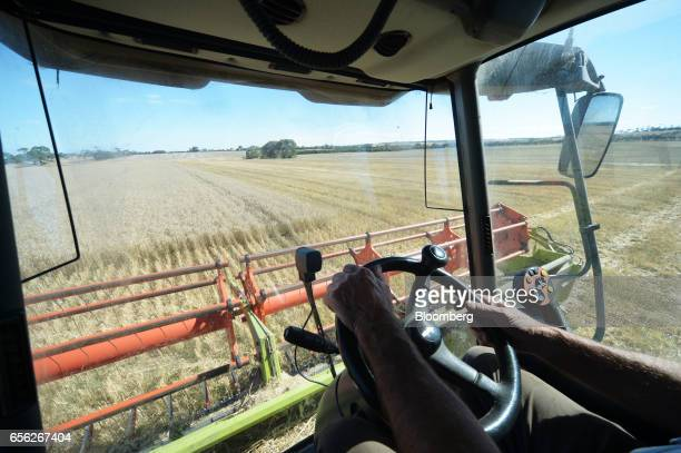 Farmer Graham Brown harvests wheat with a combine harvester at a farm near Drysdale Australia on Wednesday Feb 15 2017 Wheat shipments from Australia...