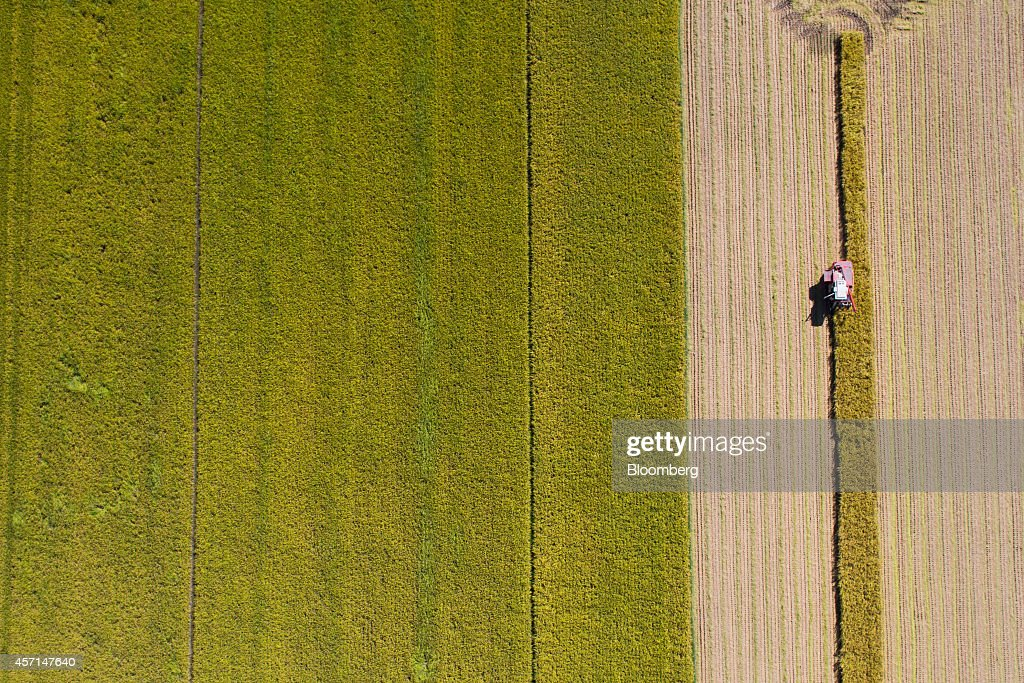 A farmer harvests rice with a combine harvester in a paddy field in this aerial photograph taken in Hadong, South Korea, on Thursday, Oct. 9, 2014. South Korea's import and export price indices are scheduled to be released Oct. 15. Photographer: SeongJoon Cho/Bloomberg via Getty Images.