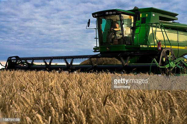 A farmer harvests wheat near Salto Argentina on Monday Dec 24 2012 Argentina South America's largest wheat producer will have a current crop as low...