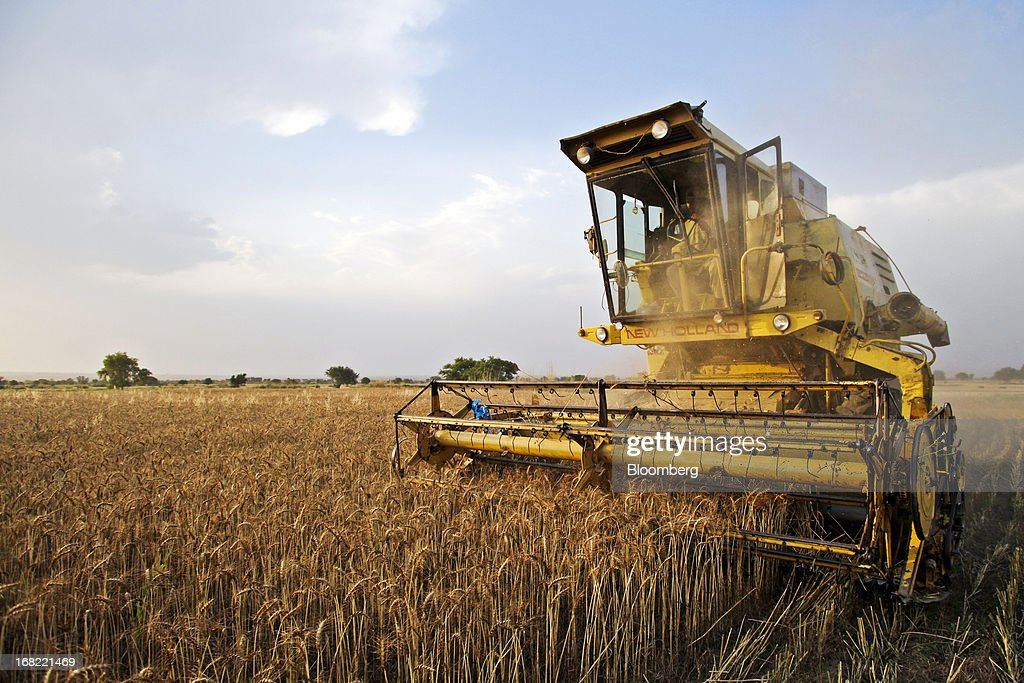 A farmer harvests wheat using a New Holland Clayson 1545 combine harvester in the Chakwal district of Punjab province, Pakistan, on Saturday, May 4, 2013. Pakistan wheat output to increase this year, the U.S Department of Agriculture's Foreign Agricultural Service said in a report posted today on its website on April 4. Photographer: Asad Zaidi/Bloomberg via Getty Images