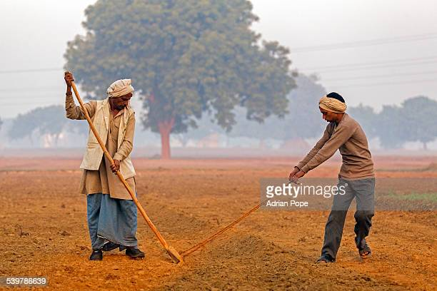 Farmer hoeing field with son