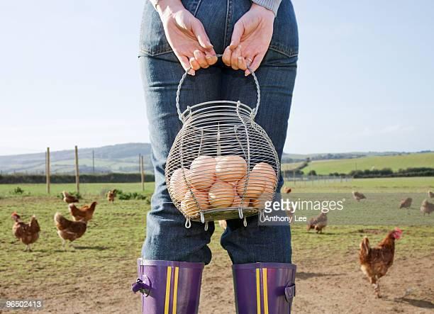 Farmer holding basket of eggs near chickens
