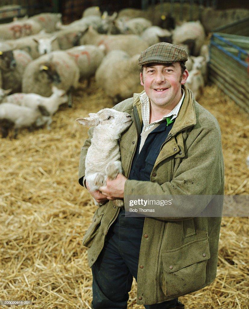 Farmer holding lamb, portrait : Stock Photo