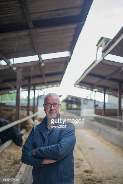 Farmer in barn with livestock