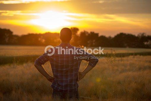 Farmer in field : Foto de stock
