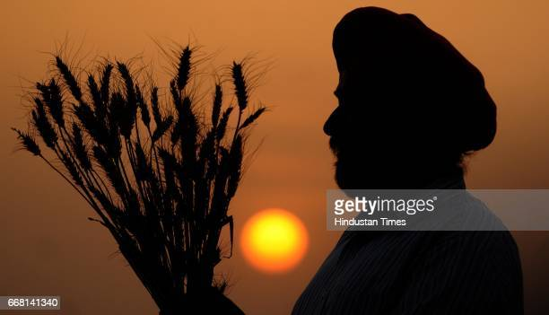 A farmer in jubilant mood on the occasion of Baisakhi festival on April 13 2017 in Patiala India Baisakhi is a historical and religious festival in...