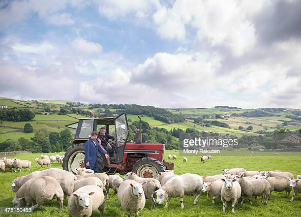 Farmer in tractor with son watching sheep in field