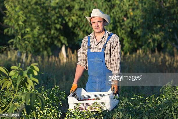 農家の植物園