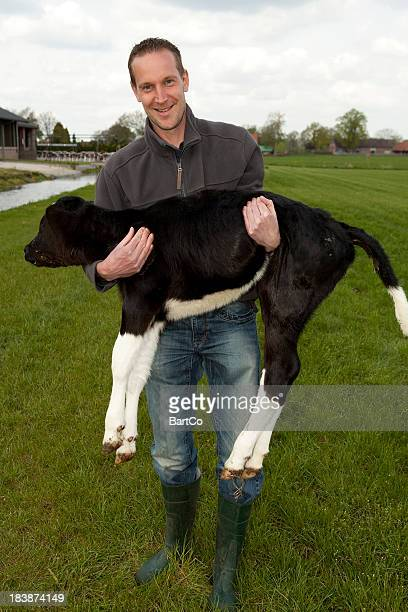 Farmer is holding a calf.