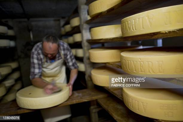 Farmer Jean Louis Roch turns and rubs with saltwater solution the rind of a Gruyere cheese he made at the mountain pasture of 'Theraulaz d'en bas'...