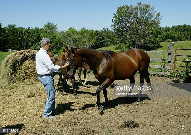 Farmer Jim Nelson looks on as democratic presidential nominee US Sen John Kerry pets horses while visiting the Nelson Family Farm August 6 2004 in...