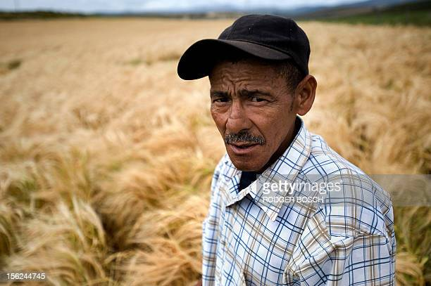 Farmer John Davids stands in a wheat field on a farm managed by the Agri Dwala emerging farmers group on October 11 close to Napier Southern Cape...