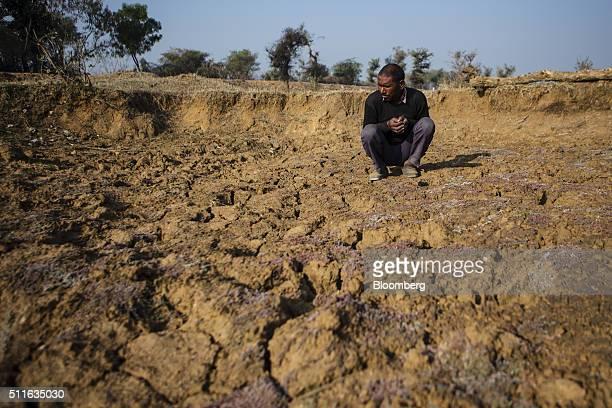 Farmer Khajju Ahirwar squats at his driedup field in the village of Patharkhera in Tikamgarh Madhya Pradesh India on Saturday Feb 9 2016 Rising...