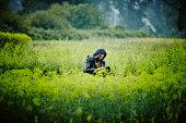Farmer kneeling examining organic lettuce