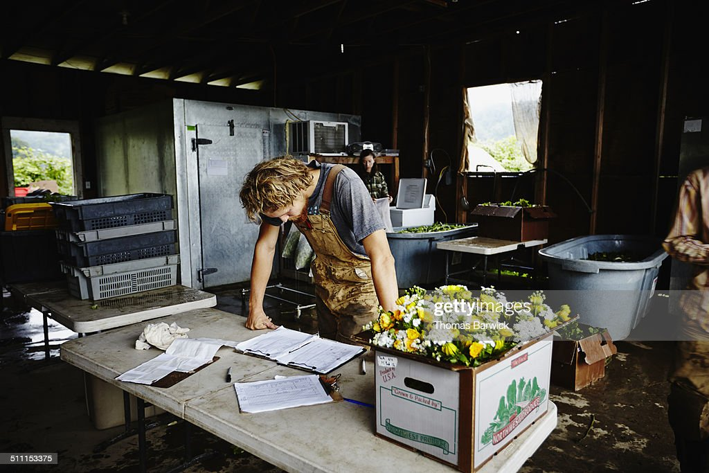 Farmer leaning on table checking delivery log : Stock Photo