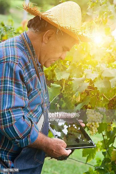 Agriculteur à la recherche à une tablette numérique en plein