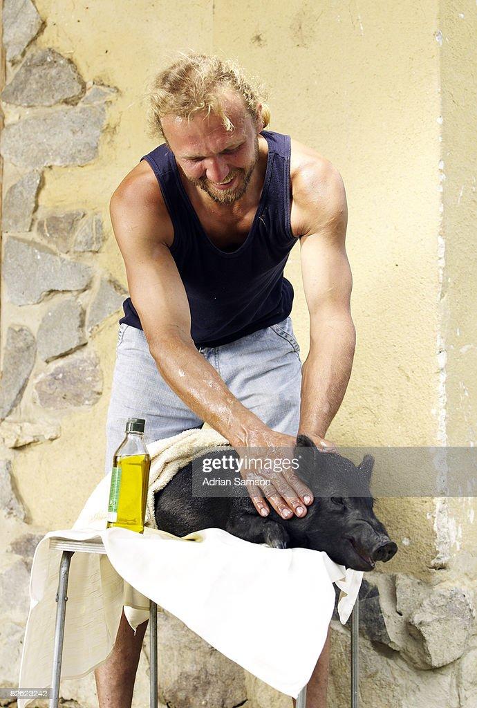 Farmer massaging pig : Stock Photo