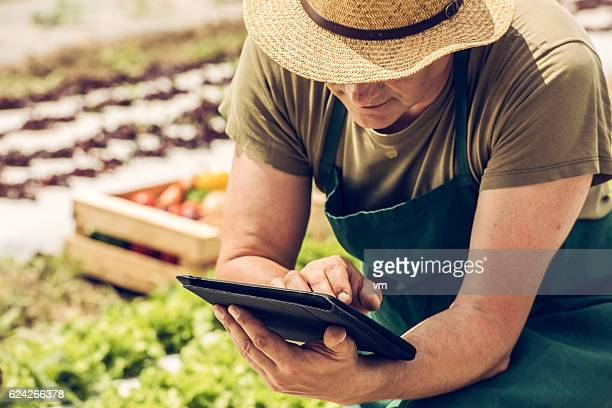 Farmer on a field with digital tablet