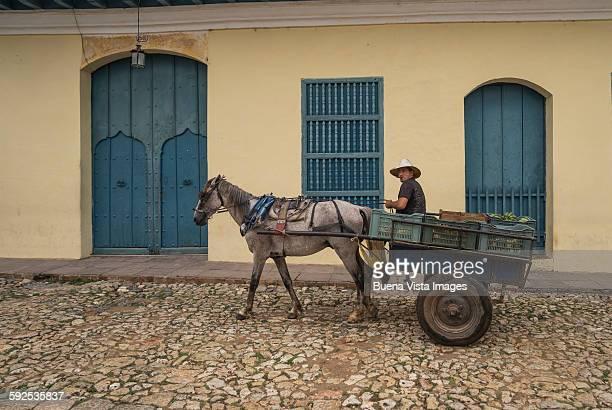 farmer on a horse carriage in Trinidad de Cuba