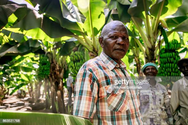 A farmer on the field of a farm on which plants grow with the support of the irrigation system of local farming cooperative Mitooini The field of a...