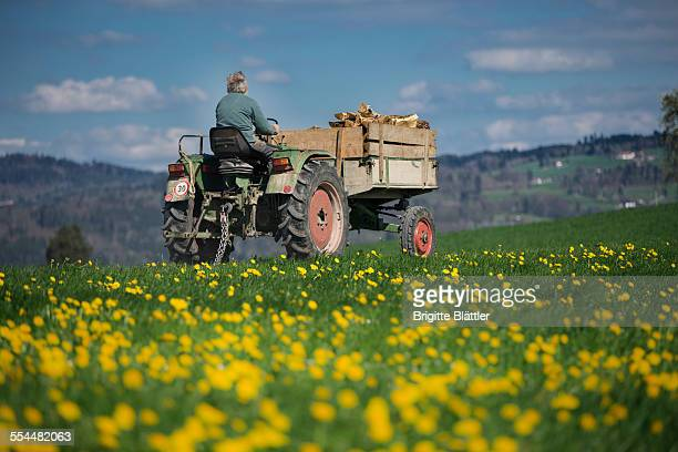 Farmer on tractor with firewood