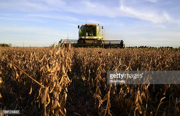 A farmer operates a Claas KGaA combine during soybean harvest on a farm near Salto Argentina on Friday May 17 2013 Argentina the world's thirdbiggest...