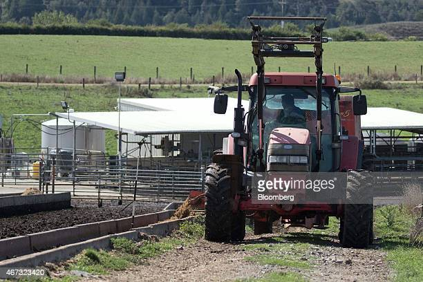 A farmer operates a tractor as he lays out feed for dairy cows at a farm that supplies to Fonterra Cooperative Group Ltd in Hamilton New Zealand on...