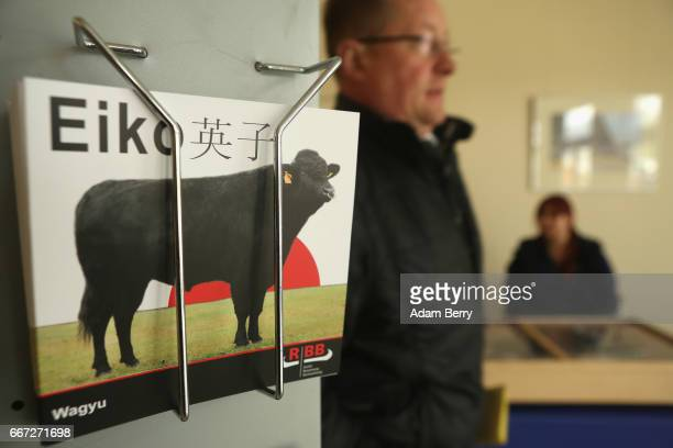 A farmer passes a brochure on Wagyu cattle at an annual heifer auction on April 11 2017 in Gross Kreutz Germany Around 80 Angus Charolais Hereford...