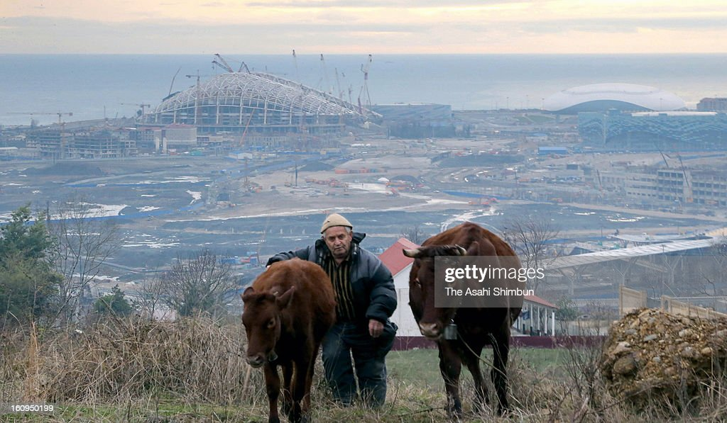 A farmer pastures on a hill where Olympic Park is seen on February 5, 2013 in Sochi, Russia. Sochi Winter Olympics begins on February 7, 2014.