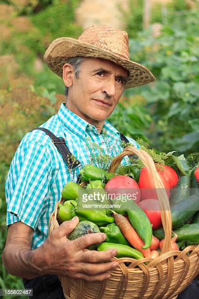 Farmer Picking Vegetables