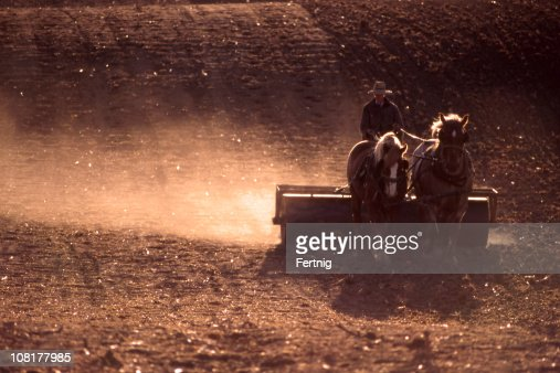 Farmer Plowing Field with Horses