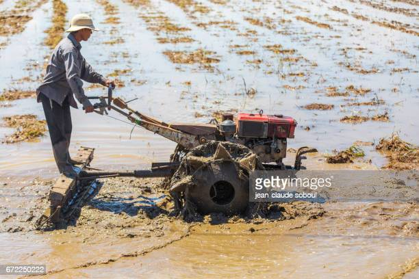 A farmer plowing in the Countryside of LaGi, at the beginning of the rainy season in April