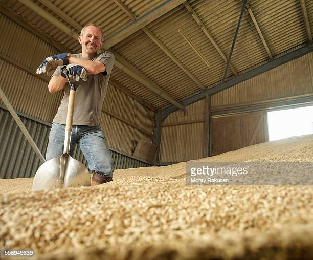 Farmer shoveling grain in barn, portrait