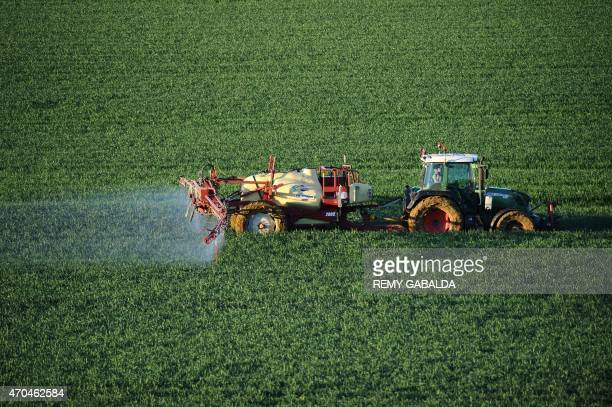 A farmer sprays a chemical fertilizer on his wheat field in TrebonssurlaGrasse southern France on April 20 2015 The fertilizer containing a trio of...