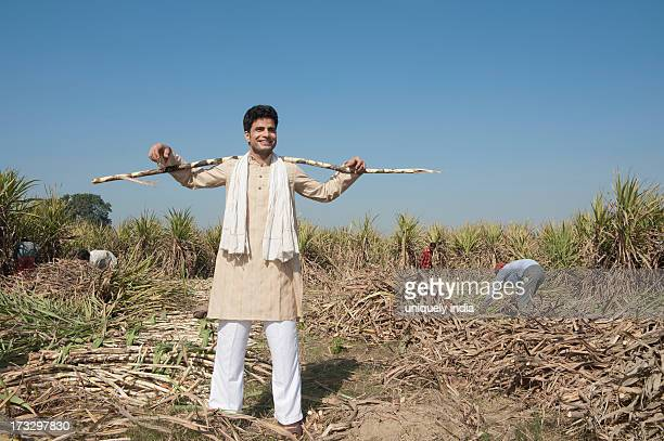 Farmer standing in a sugar cane field, Sonipat, Haryana, India